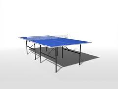 Теннисный стол всепогодный пластиковый WIPS СТ-ВП (61090)