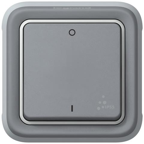 Выключатель двухполюсный - 10 AX - 250 В~. Цвет Cерый. Legrand Plexo (Легранд Плексо). 069530