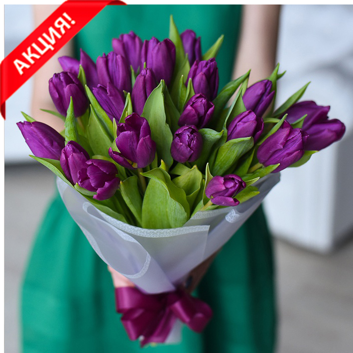 Букет 21 пурпурный тюльпан