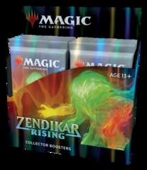 Дисплей коллекционных бустеров «Zendikar Rising» (на английском)