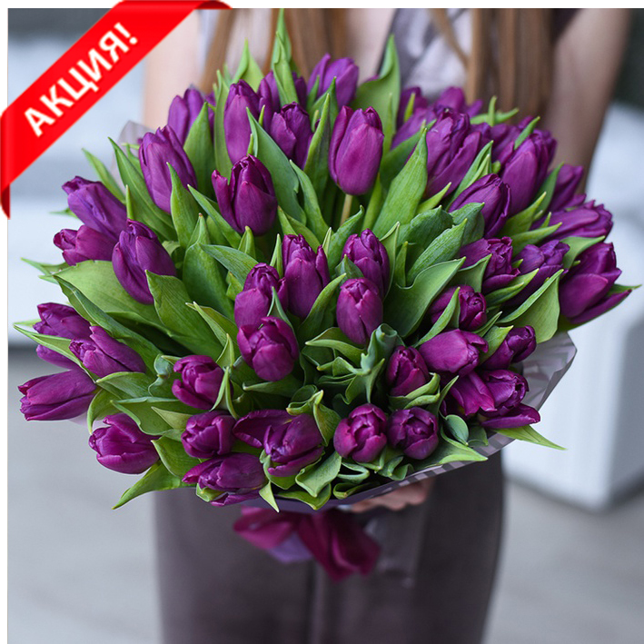 Букет 51 пурпурный тюльпан