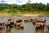 Серф-тур на Шри Ланку: все самое лучшее за 2 недели