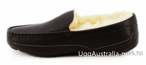 Ugg Mens Leather Ascot Chocolate