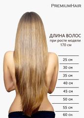 Натуральные волосы на заколках 27/60 меллированный блонд