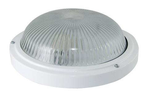 Светильник НПП 03-100-002 (металл, стекло) IP65 TDM