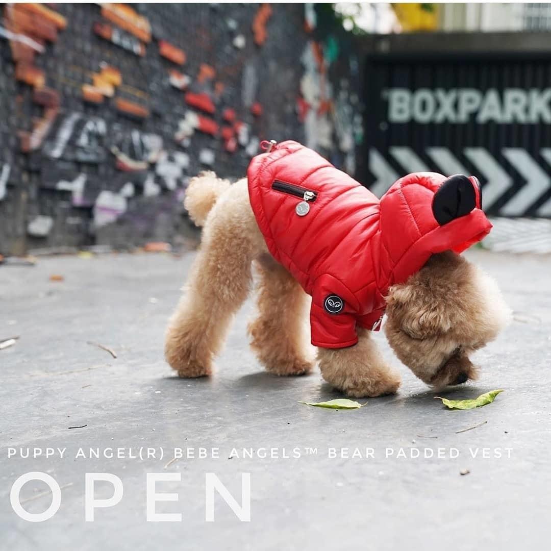 510 PA   Куртка для собак