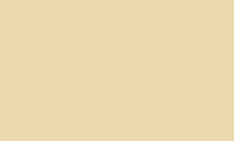 Гладкий лист (в пленке) 1,250 х 3,0м (Ral 1015(Светлая слоновая кость))