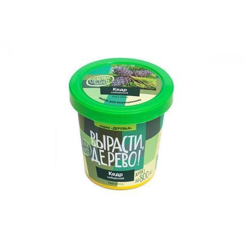 Набор для выращивания растений -Кедр сибирский