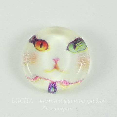 "Кабошон стеклянный  ""Кошка"" 22 мм ()"