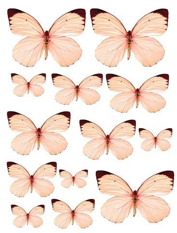 Печать на вафельной бумаге, Набор Бабочки 11