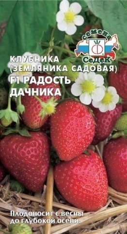 Семена Земляника Радость дачника F1