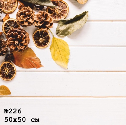 Фотофон виниловый «Осень» №226