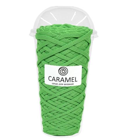 Полиэфирный шнур Caramel Киви