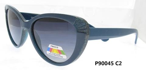P90045 C2