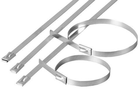 Хомут стальной ХС (304) 4,6х300 (50шт) TDM