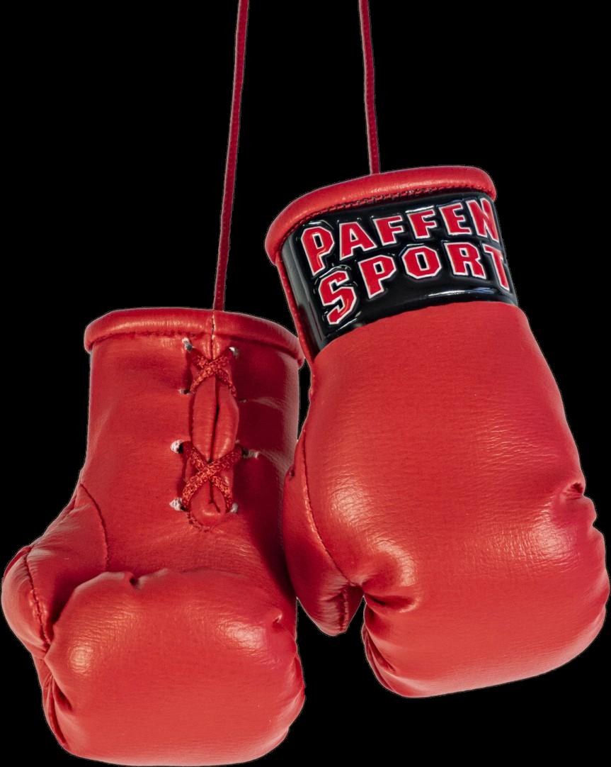 Новые сувенирные перчатки Paffen Sport COLOR Mini boxing gloves