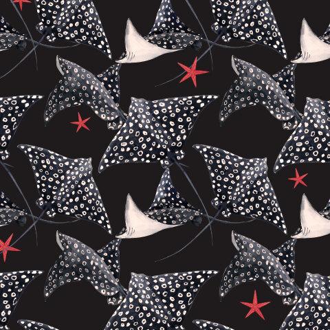 Скат и морские звезды (темный фон)