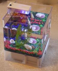 Мини аквариум куб 3 л с подсветкой №007