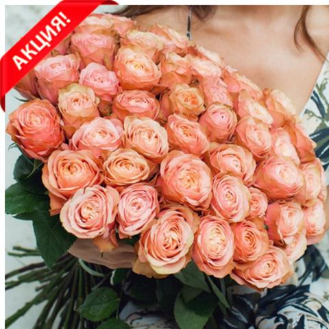 Букет 15 пионовидных роз Kahala