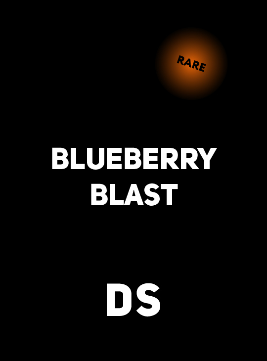 Аксессуар DS RARE BLUEBERRY BLAST 250