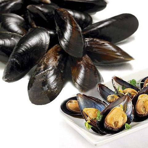 https://static-ru.insales.ru/images/products/1/2536/89369064/mussels_in_shells.jpg