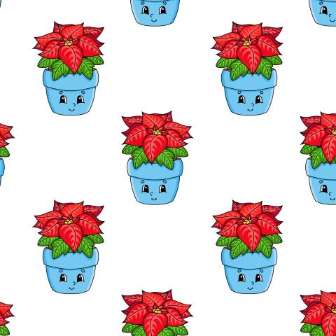 Цветок пуансеттия в горшочке