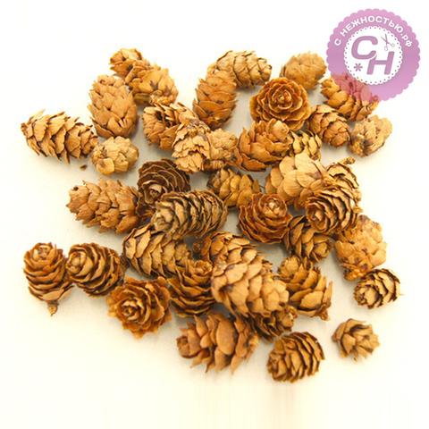 Шишки декоративные натуральные 2-3 см, набор 50 г.