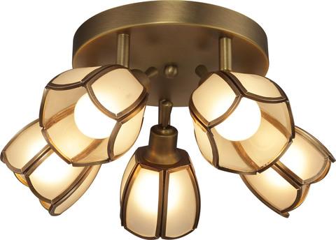 INL-9317C-05 Golden Brass