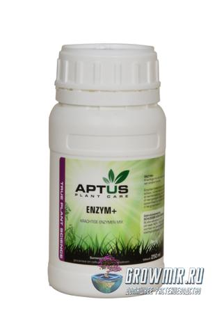 Aptus Enzyme+ 250 мл