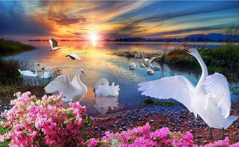 Алмазная Мозаика 40x50 Лебеди на закате (арт. GA71175)