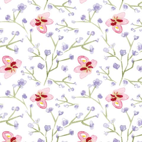 Нежные цветочки на белом фоне
