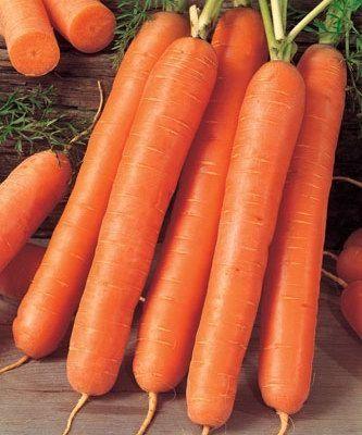 Нантский Ройал Форто семена моркови нантской (Seminis / Семинис) РОЙАЛ_ФОРТО__Royal_Forto__семена_овощей_оптом.jpg
