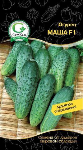 Семена Огурец Маша F1 (Seminis) 50 сем