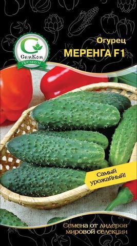 Семена Огурец Меренга F1 (Seminis) 50 сем