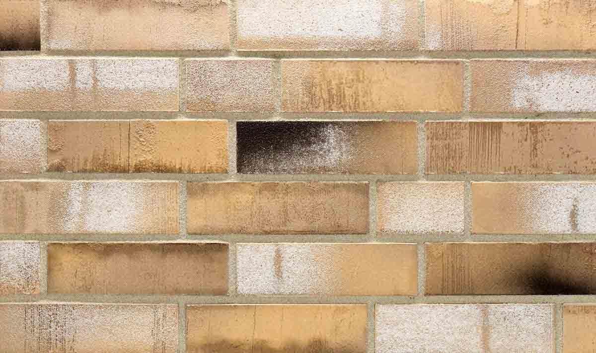 Stroeher Sonderbrand №31447 - Клинкерная плитка для фасада и внутренней