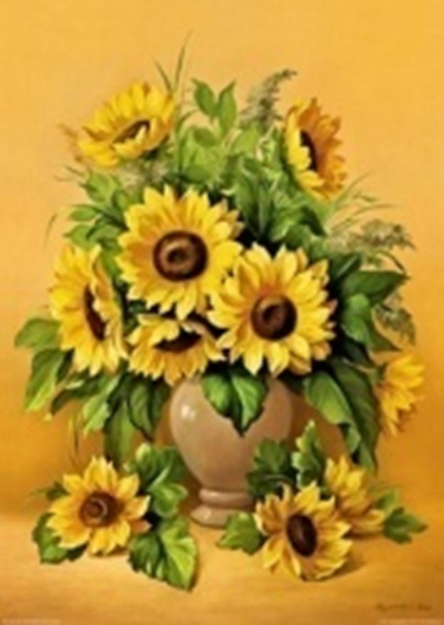 Картина раскраска по номерам 30x40 Желтые цветы на желтом ...