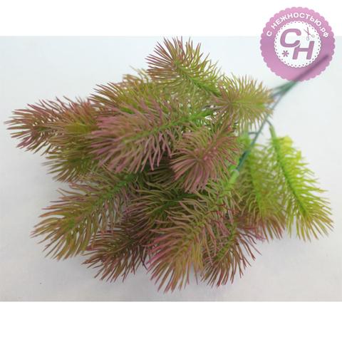 Еловая ветка - сосна горная пушистая, 5 веток, 35 см, 1 шт.