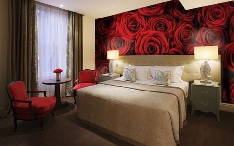 Красные розы 194x270 см