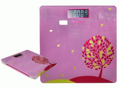 Весы электронные: B8012