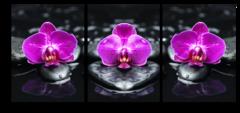"""Модульная картина """"Фиолетовые орхидеи"""""""