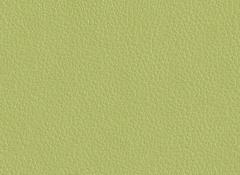 Искусственная кожа Best (Бест) 79