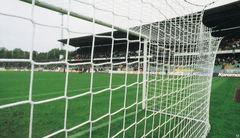 Сетка футбольная (7,50м х 2,50м ) ПРОФИ, d=5.0мм  /пара.