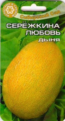 Семена Дыня Серёжкина любовь
