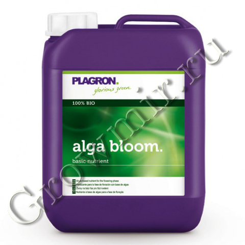 Plagron Alga Bloom 5 L