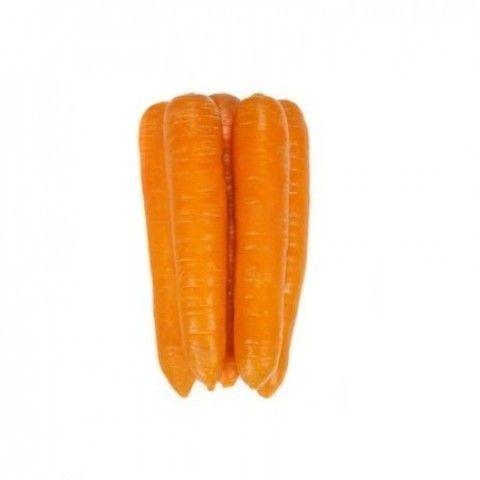 Нантский Фидра F1 семена моркови нантской (Rijk Zwaan / Райк Цваан) large_ФИДРА_F1_семена_овощей_оптом.jpg