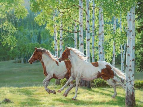 Алмазная Мозаика 30x40 Лошадиный забег
