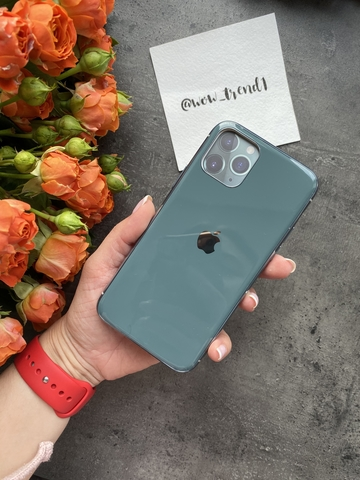 Чехол Iphone 11 Pro Glass Silicone Case Logo /forest green/