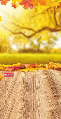 Фотофон стена пол №299 Осенний лес