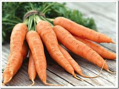Шантенэ а кур руж 2 семена моркови курода/шантане (Syngenta / Сингента)