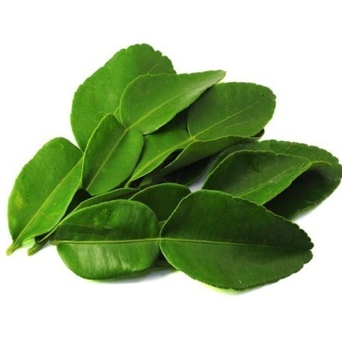 https://static-ru.insales.ru/images/products/1/2812/320727804/large_lime_leaves.jpg